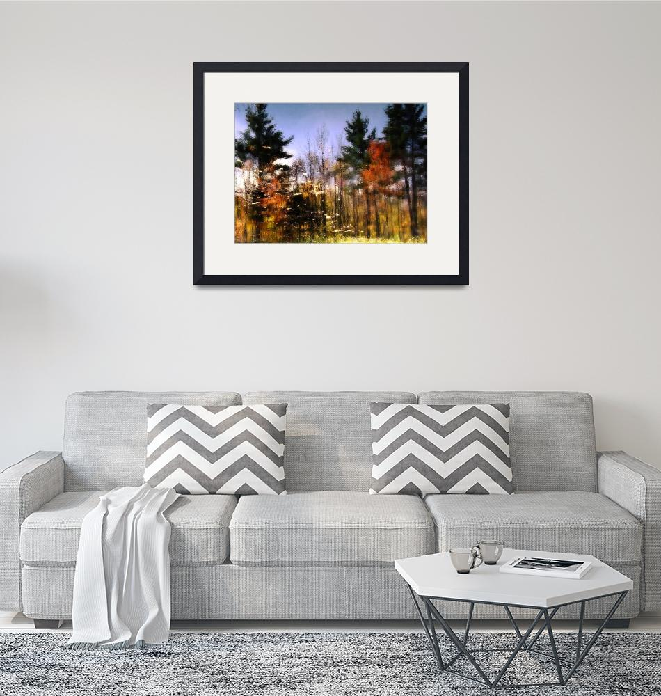 """""""Abstract Fall Scene In New Hampshire""""  (2010) by bavosiphotoart"""