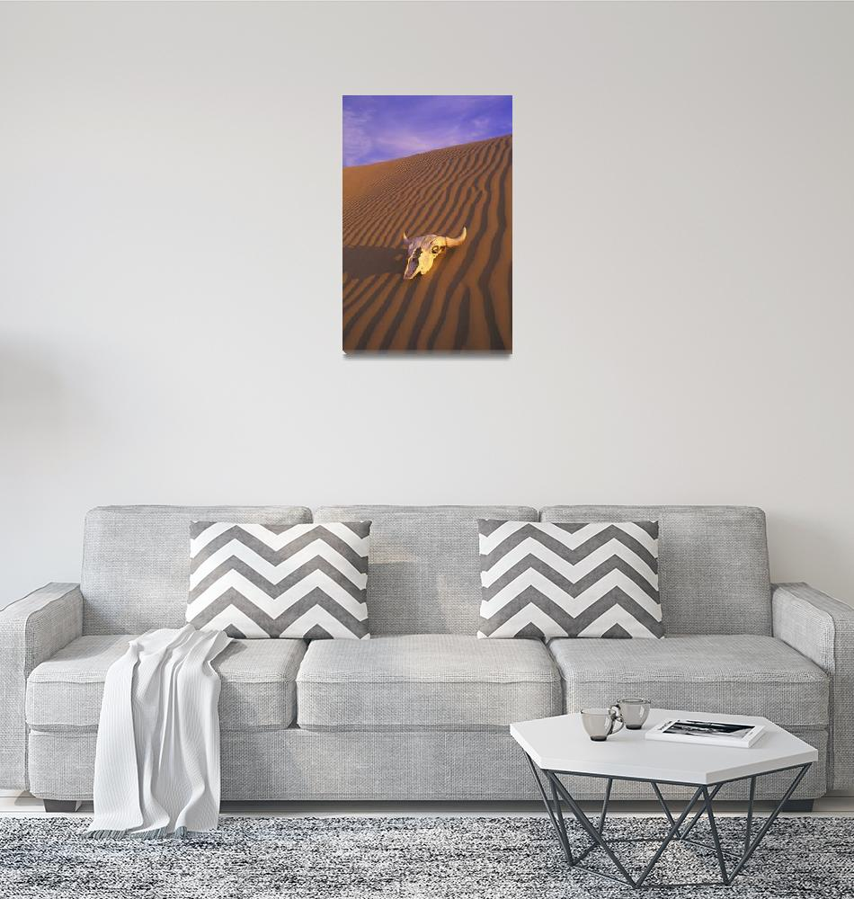 """""""Skull In Desert""""  by DesignPics"""