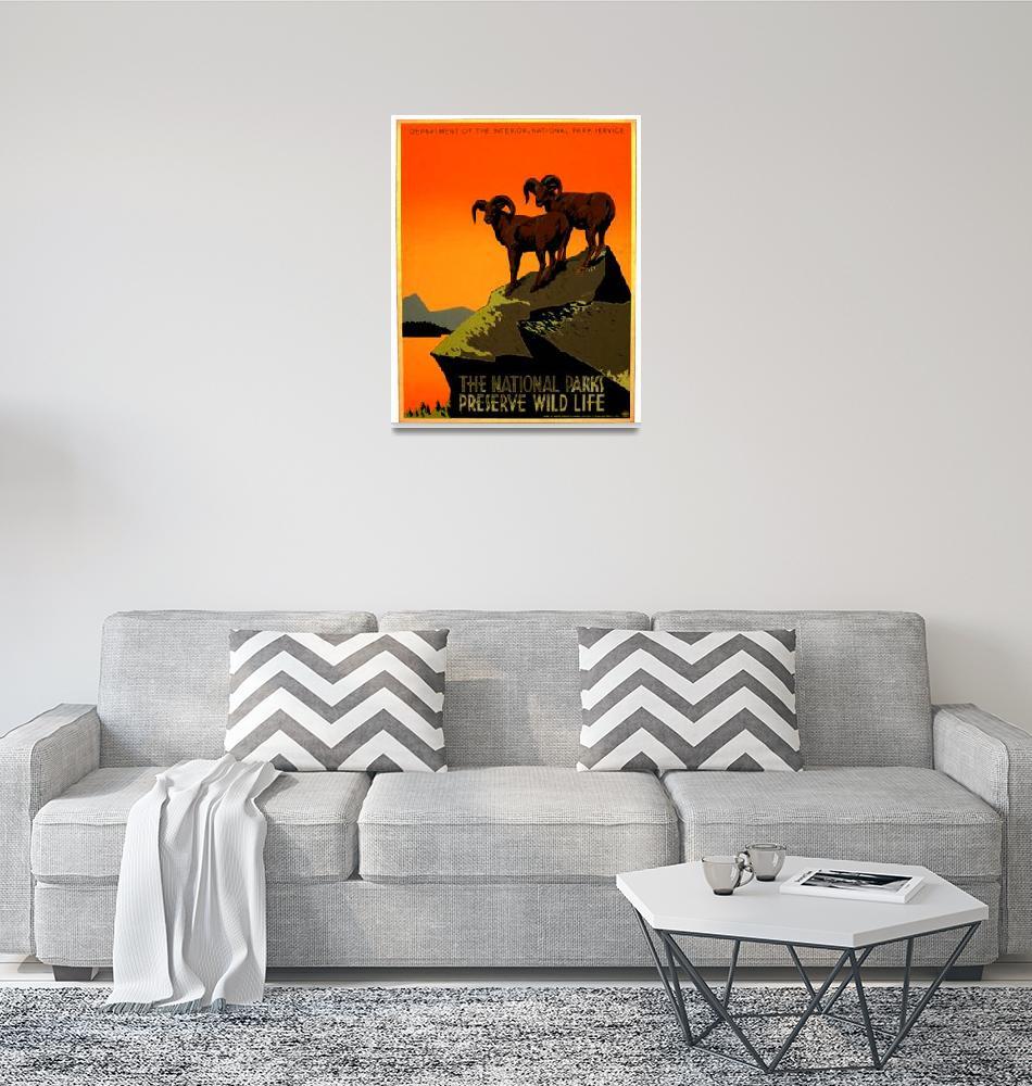 """Bighorn Sheep Glacier National Parks""  by BlueRoosterGraphix"