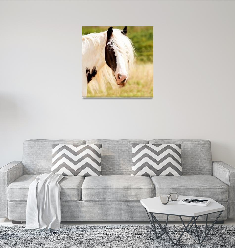 """""""White Brown Horse Animal Portrait""""  (2016) by rogueart"""