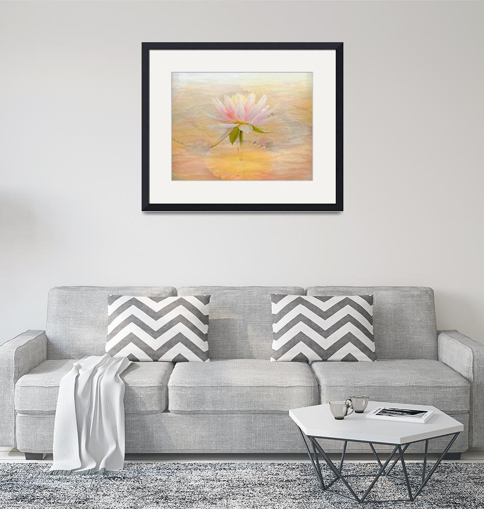 """""""Waterlily Pink""""  (2015) by swaby"""