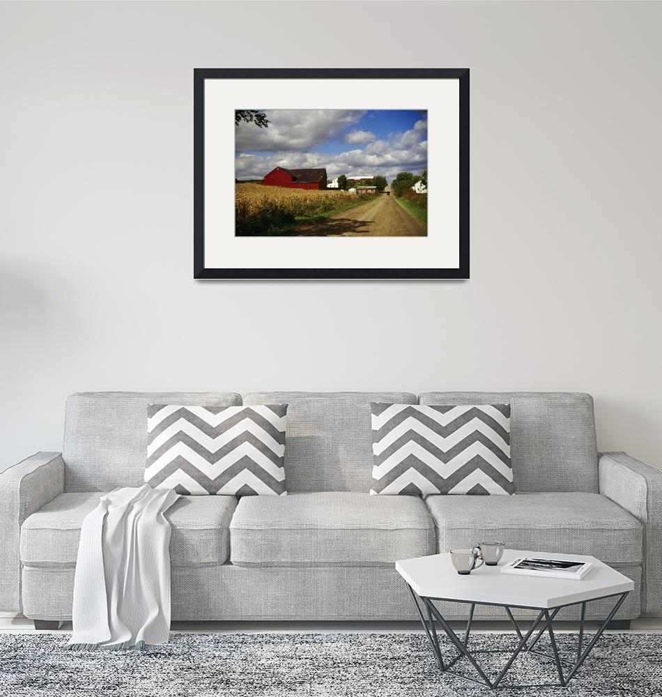"""""""Amish farm buildings and corn field along country""""  by Panoramic_Images"""
