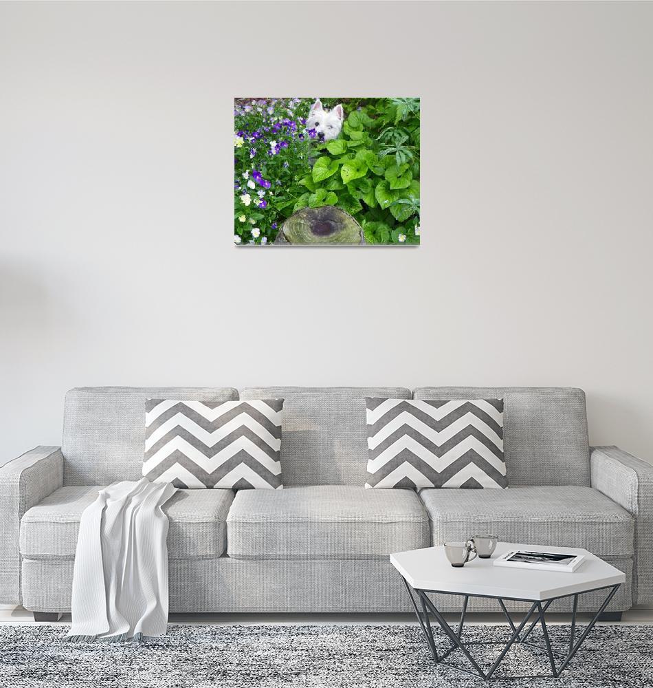 """Peeping Beni - Flower Garden""  by artsandi"