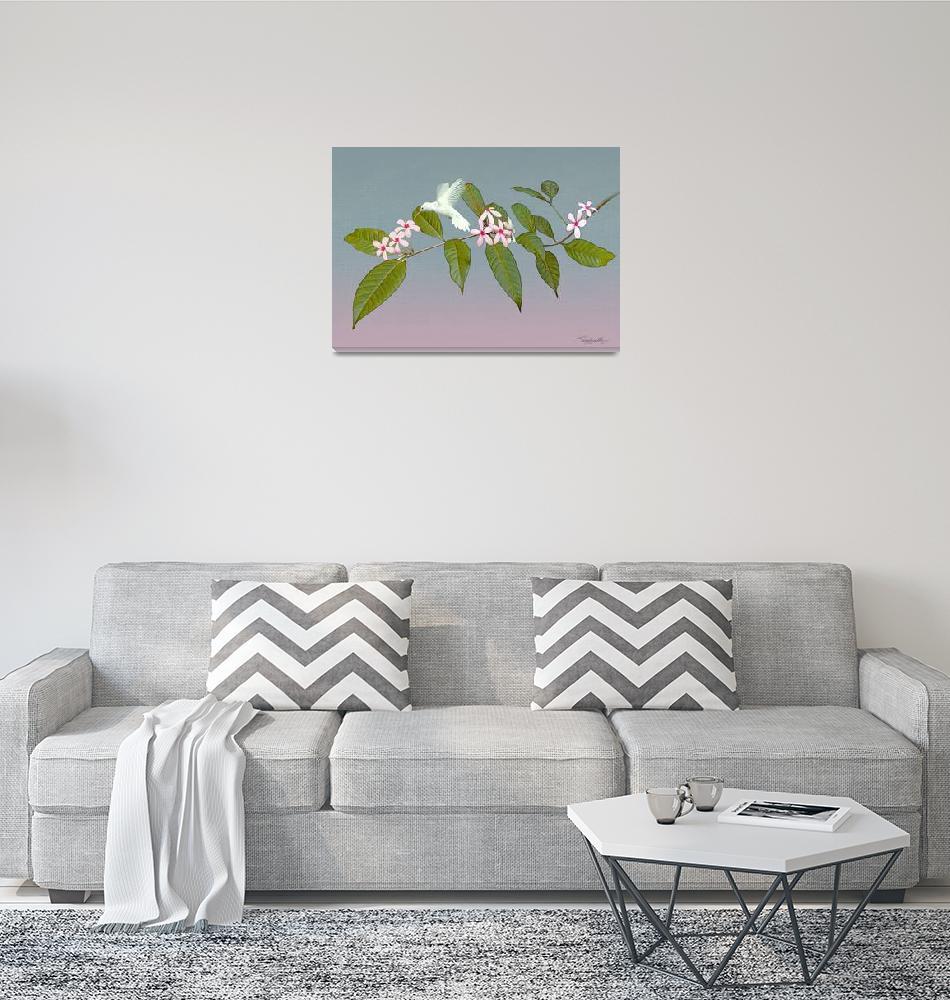 """Hummingbird_White_Kopsia_IMG""  by spadecaller"
