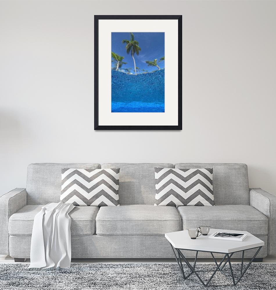 """Looking Up At Palm Trees From Underwater In Swimmi""  by DesignPics"