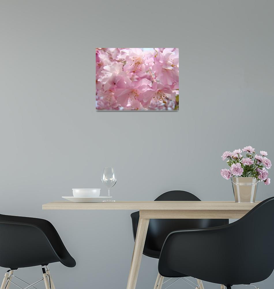 """""""PASTEL PINK BLOSSOMS Favorite Flower Tree Blossoms""""  (2009) by BasleeTroutman"""