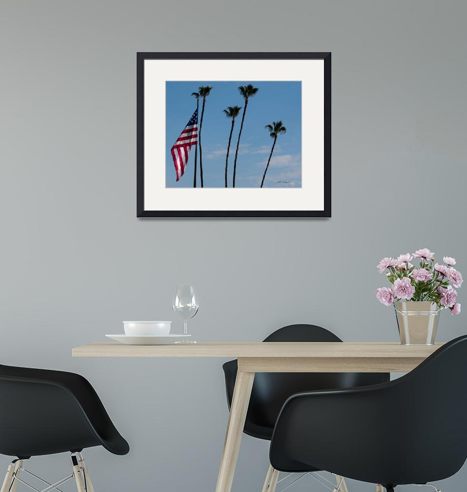 """""""Old Glory and Palm Trees""""  (2010) by johncorney"""