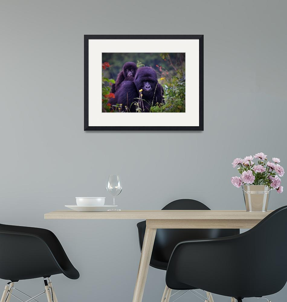 """""""Mountain gorilla and baby""""  (2019) by DVMPat"""