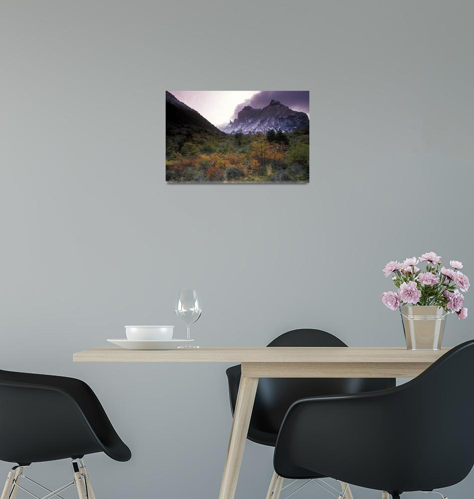 """Valle del Frances Parque Nacional Torres del Paine""  (2000) by Irudi"