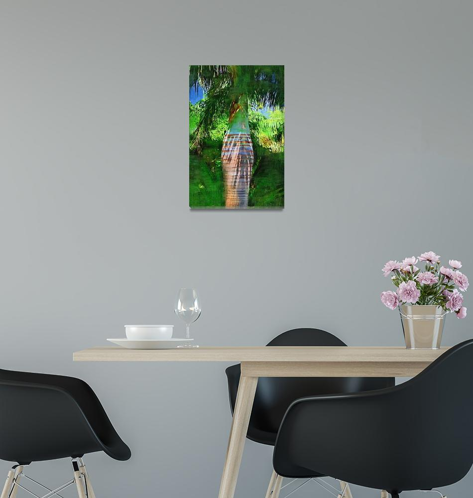 """Pseudophoenix vinifera palm tree botanical garden""  by palmimages"
