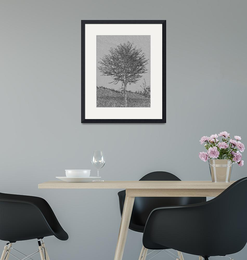 """""""Lone Tree""""  (2010) by katien"""