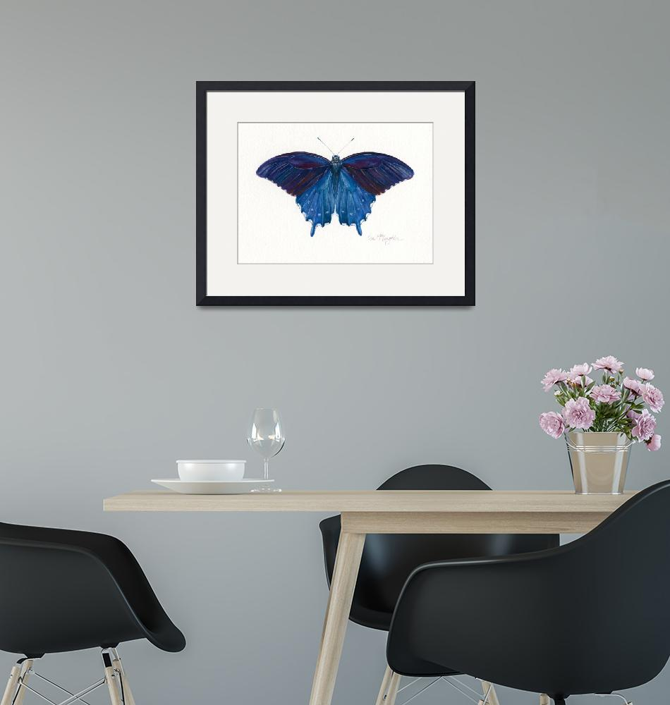 """""""Pipevine Swallowtail""""  (2008) by LisaMclaughlin"""