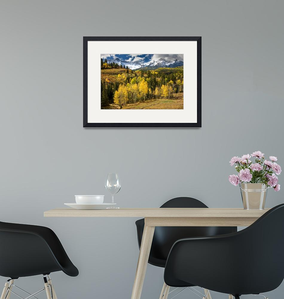 """""""Yellow Aspens in The Rockies""""  by pbk"""