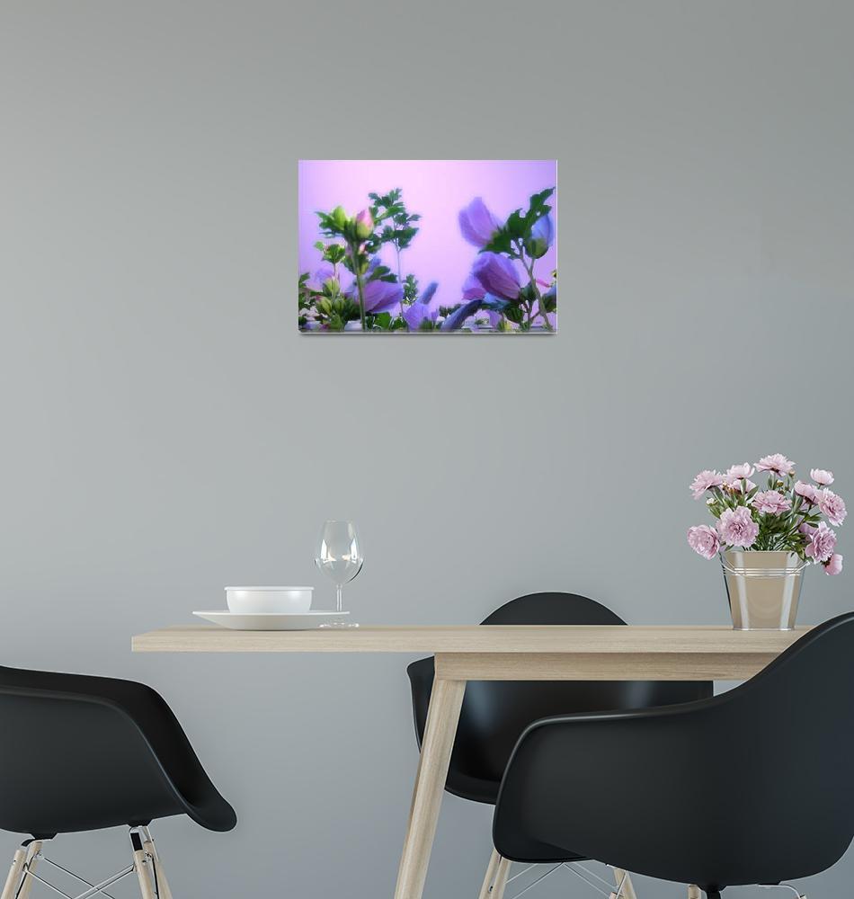 """Purple Flowers 1""  (2009) by micspics444"