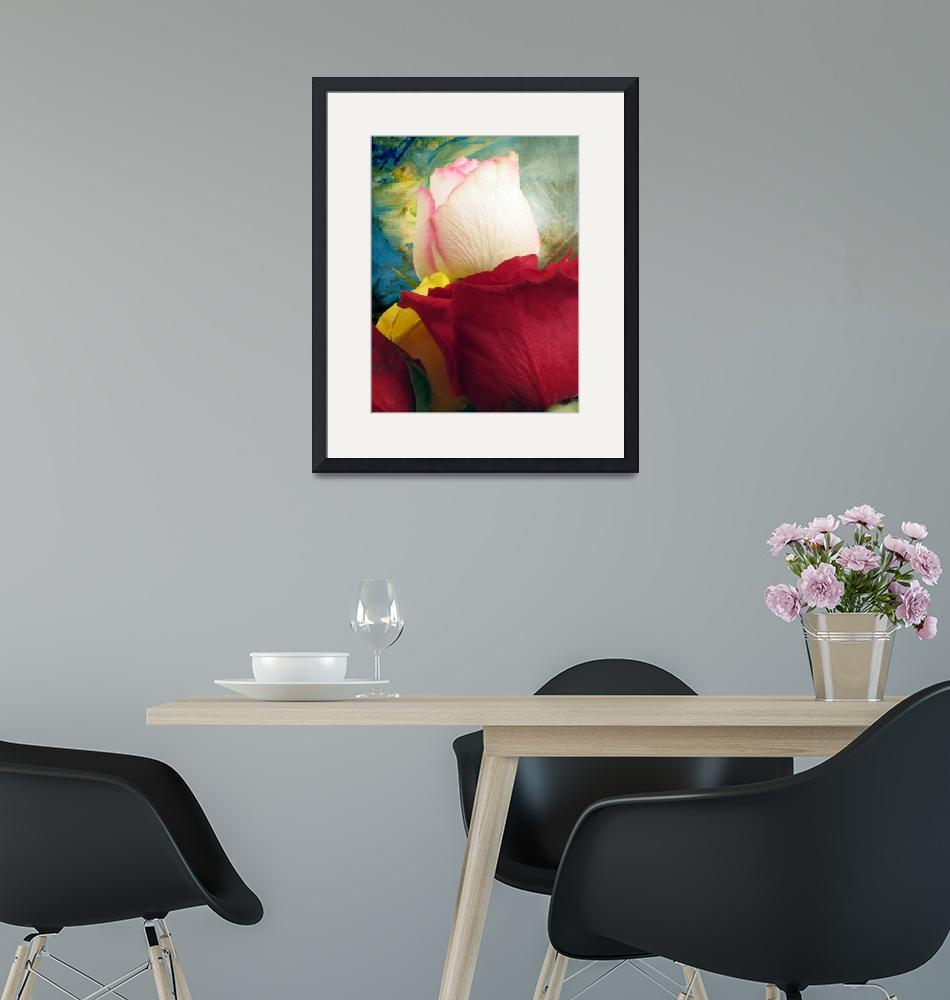 """""""Roses in Abstract Light"""" (2013) by John-Fish"""