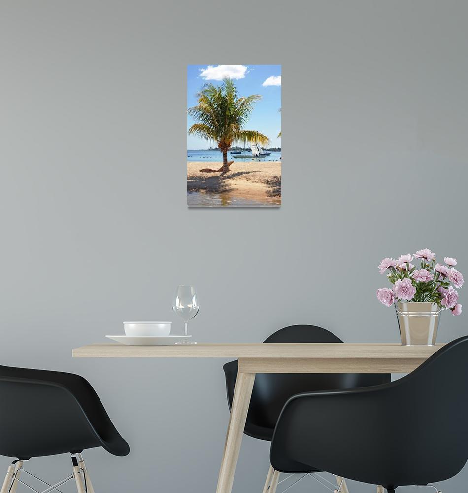 """""""coconut palm tree""""  (2010) by Rajeshbac"""