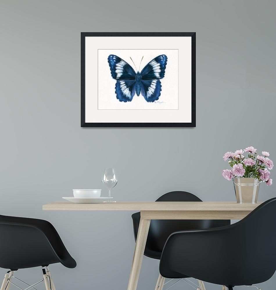 """""""Western Admiral butterfly""""  (2008) by LisaMclaughlin"""