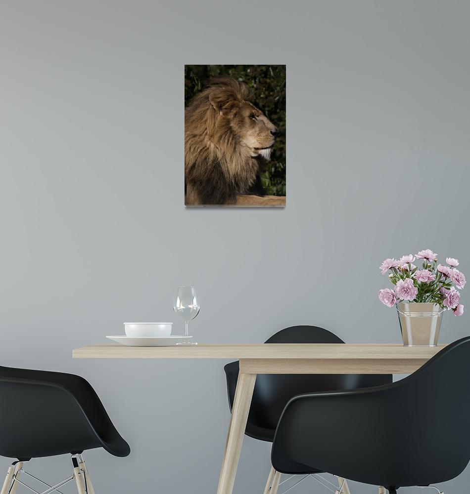"""RW1500 Lion""  (2013) by loversdream"
