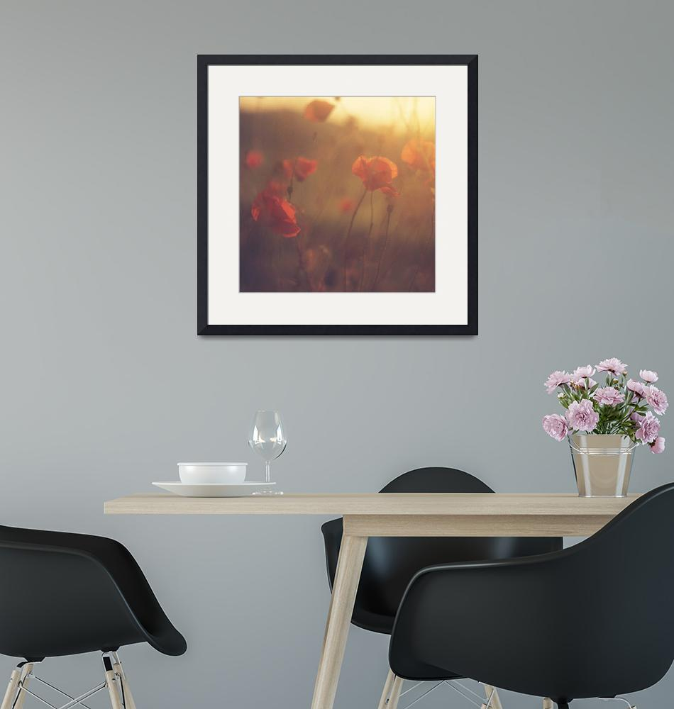 """""""Red wild flowers poppies hot summer day""""  (2011) by edwardolive"""