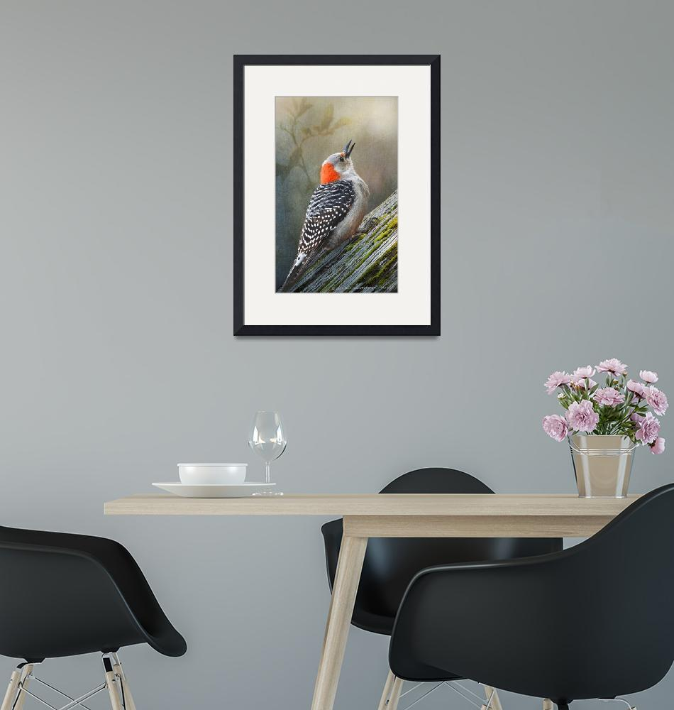 """""""red-bellied woodpecker forest""""  (2020) by rchristophervest"""