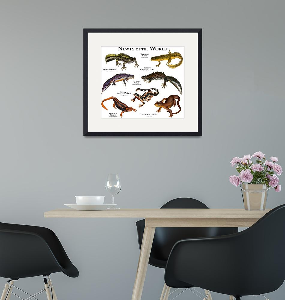"""""""Newts of the World""""  by inkart"""