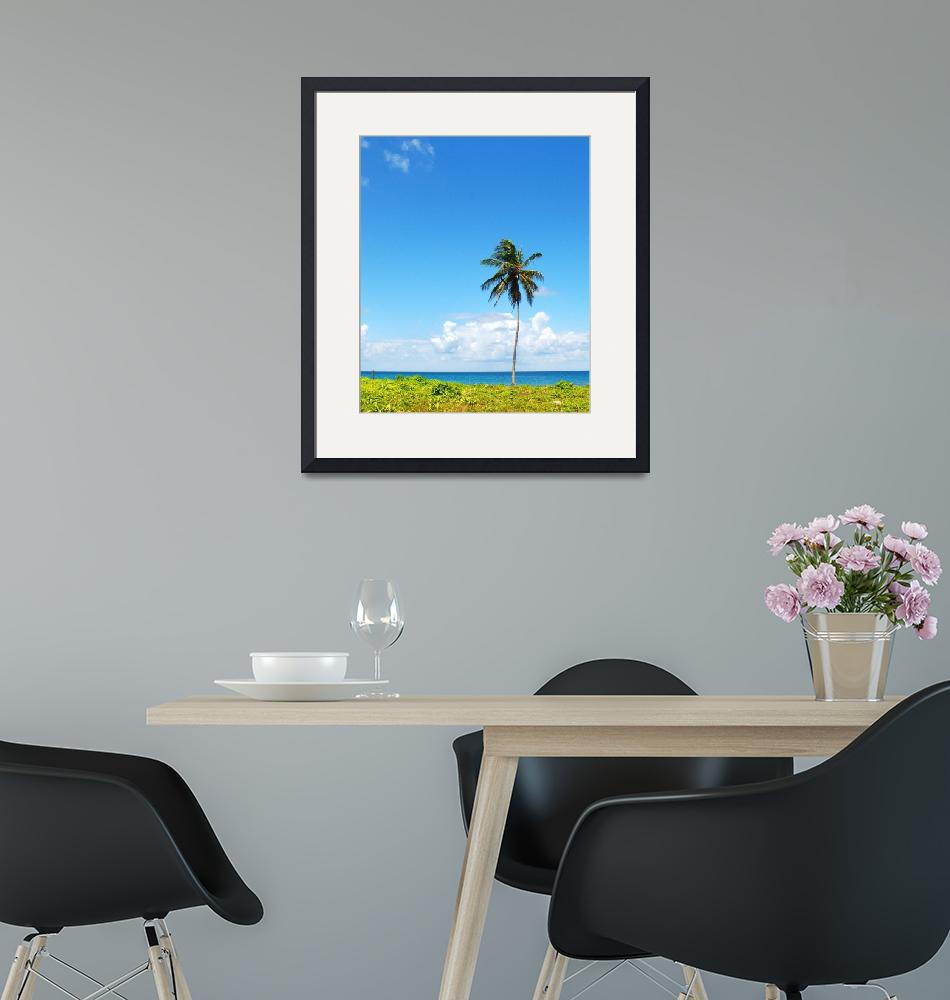 """""""Lone Palm""""  (2011) by monicadowns"""