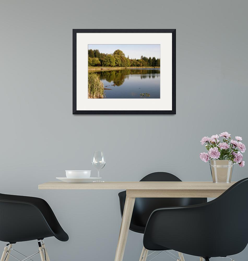 """""""Mill Pond at Vernonia"""" (2009) by rgtmum"""
