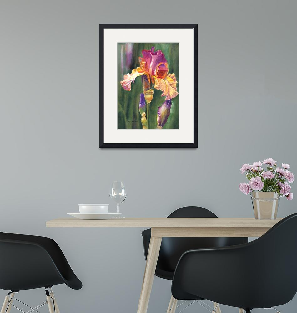 """""""iris on the warm side""""  (2011) by Pacific-NW-Watercolors"""
