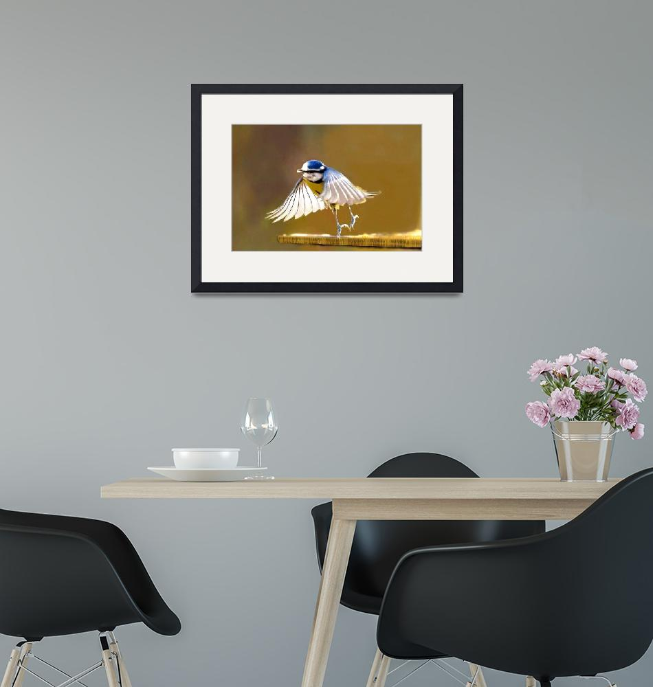 """""""Blue tit with lighted wings - Ipad art""""  (2012) by Spangles44"""