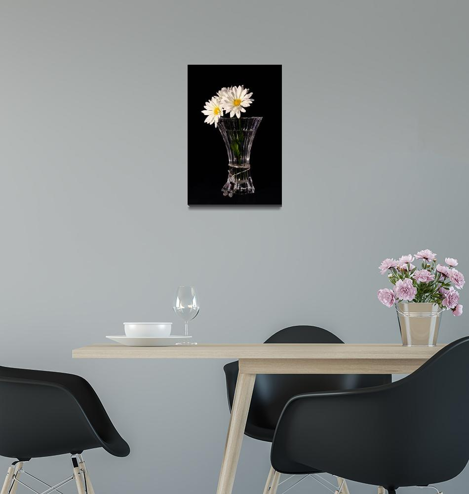 """Daisies In Vase""  (2013) by PhotographyTKDesigns"
