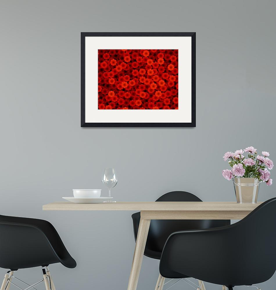 """Red flowers""  (2005) by darrenwhittingham"