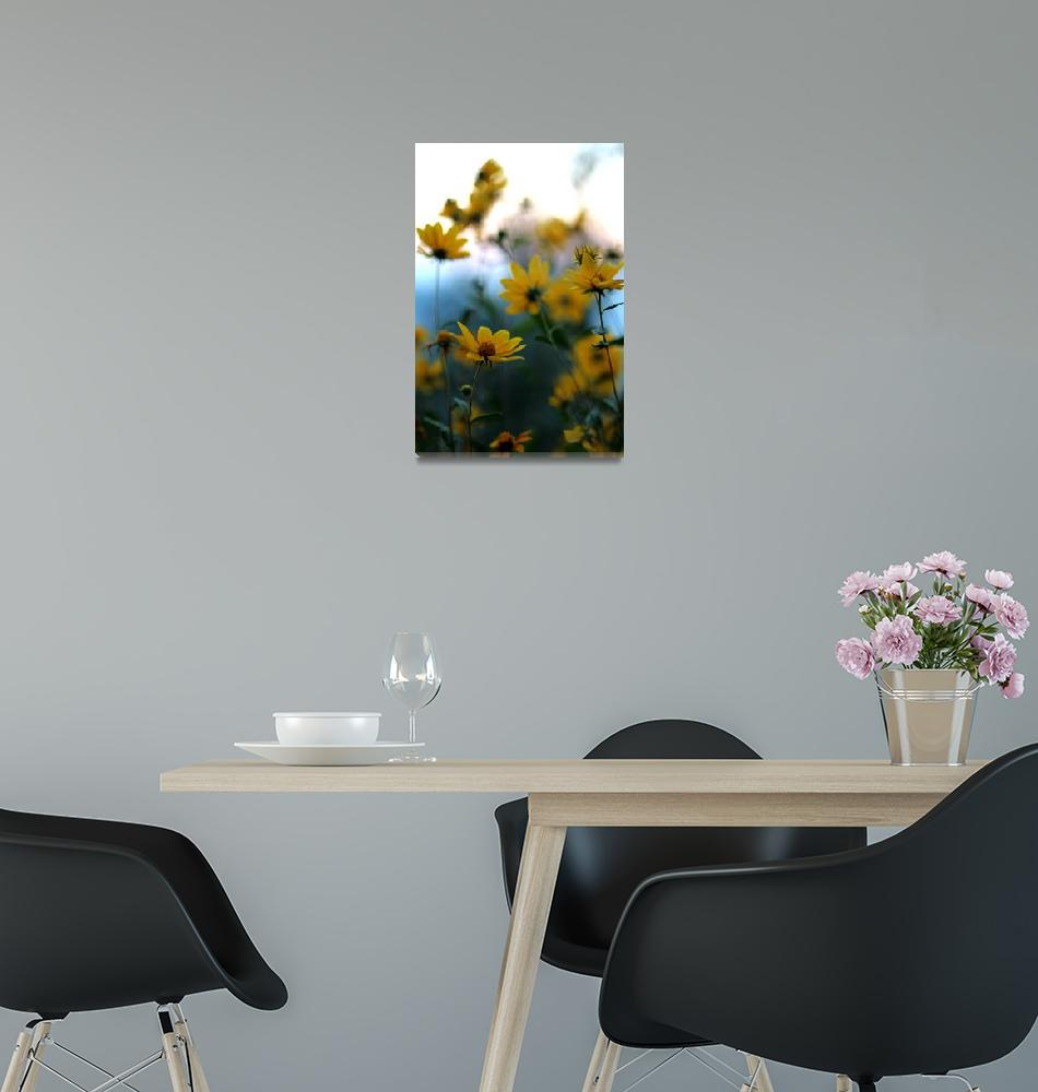 """""""Morning Sunflower""""  (2012) by TheIcePixy"""