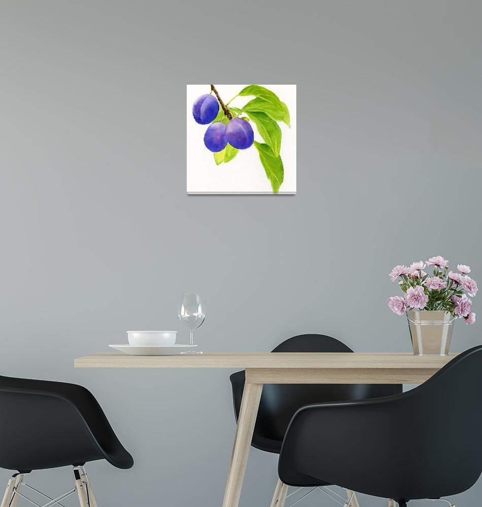 """""""Blue and Purple Plums Square Design""""  (2013) by Pacific-NW-Watercolors"""