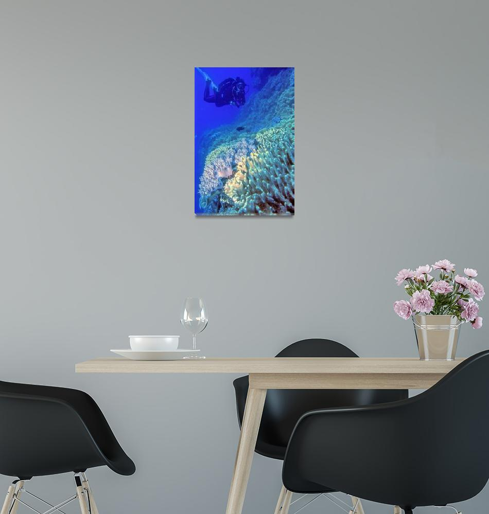 """""""Pristine Reef, And Nina""""  (2018) by JoaoPonces"""