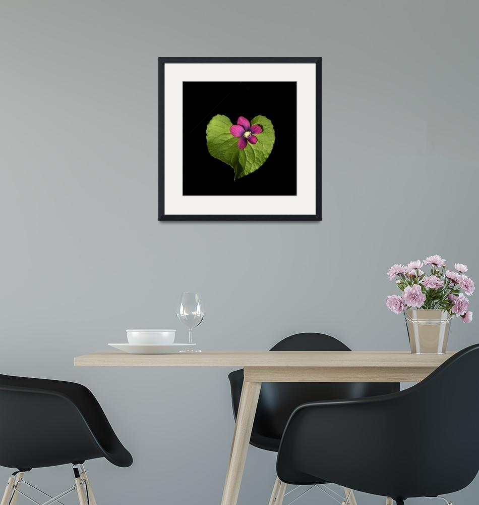 """""""Violet Love""""  (2011) by ecoday"""