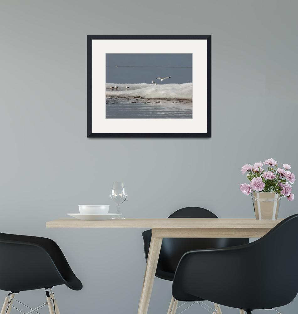 """""""Bergs-Gull-Lighthouse""""  by Frame-It"""