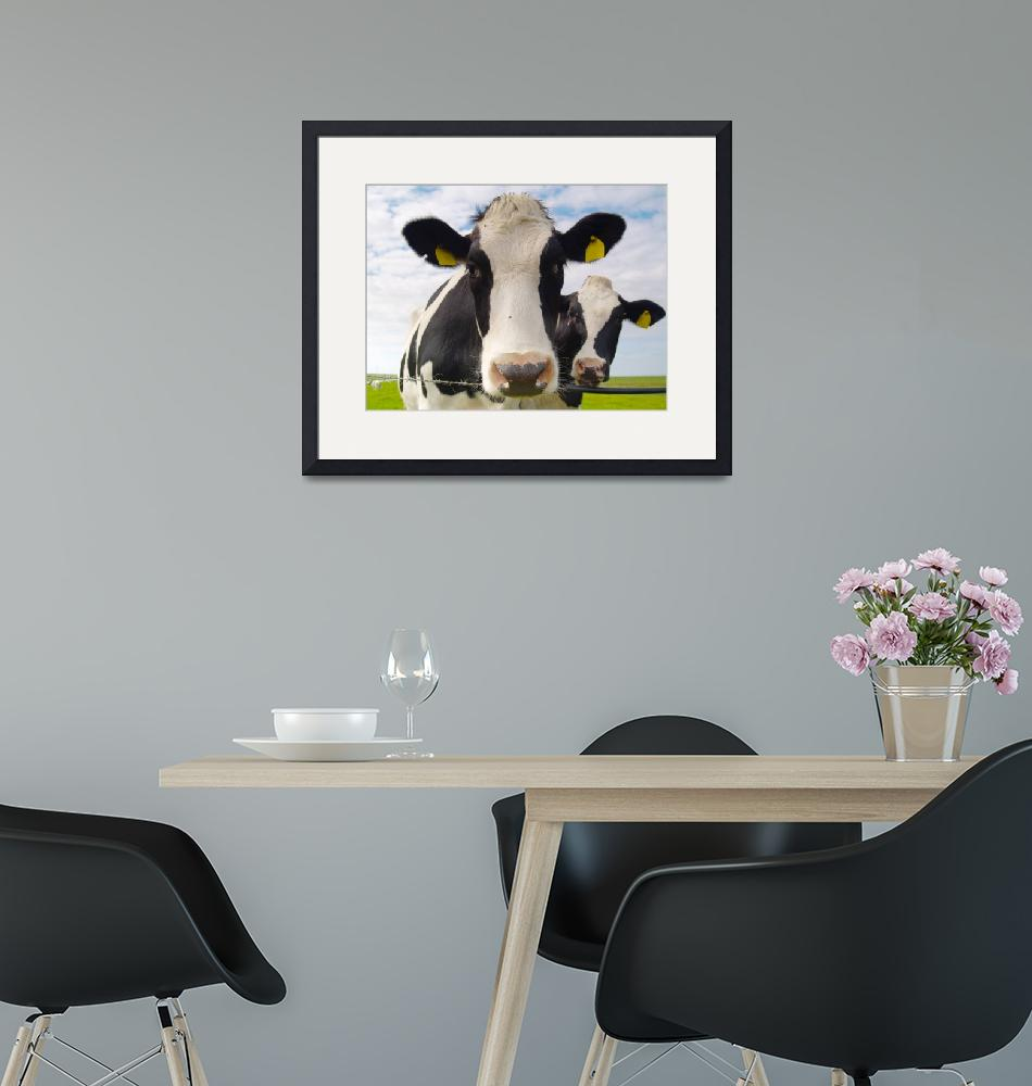 """""""two cows""""  (2009) by derausdo"""