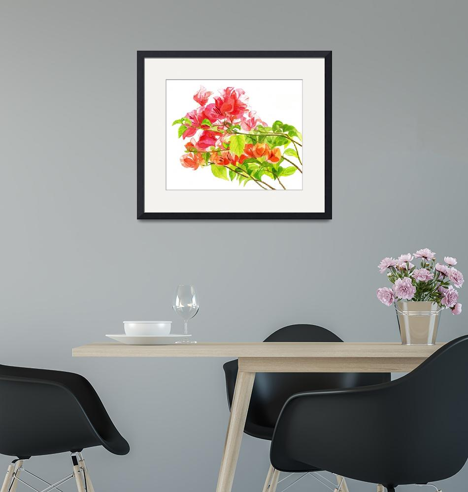 """Branch of Bougainvillea white background""  (2012) by Pacific-NW-Watercolors"