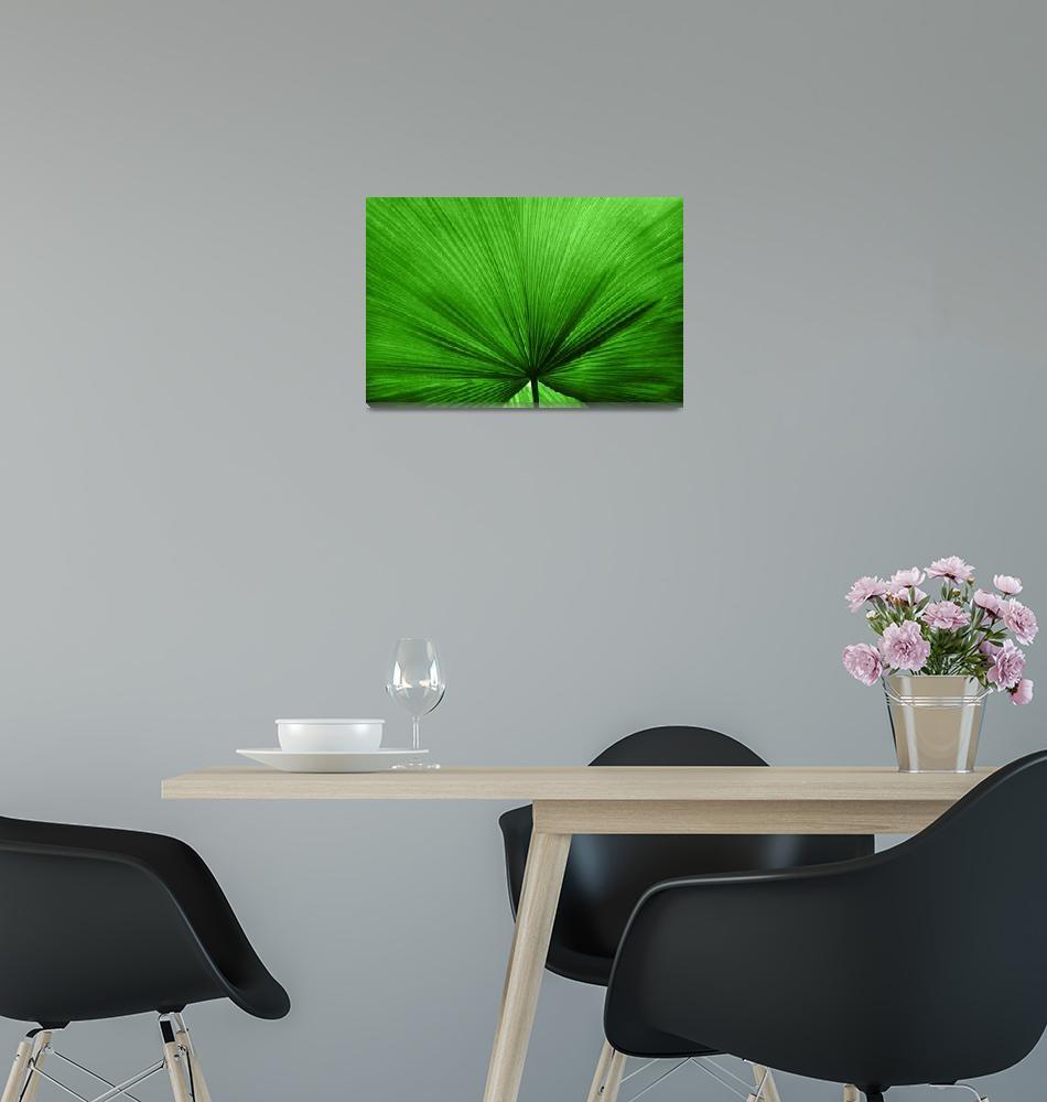 """""""The Big Green Leaf""""  (2012) by NatalieKinnear"""