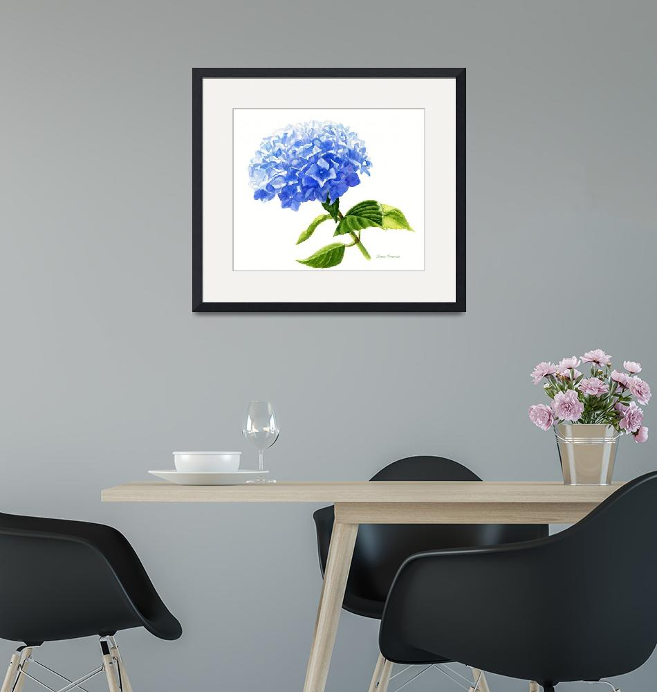 """""""Blue Hydrangea Blossom""""  (2011) by Pacific-NW-Watercolors"""