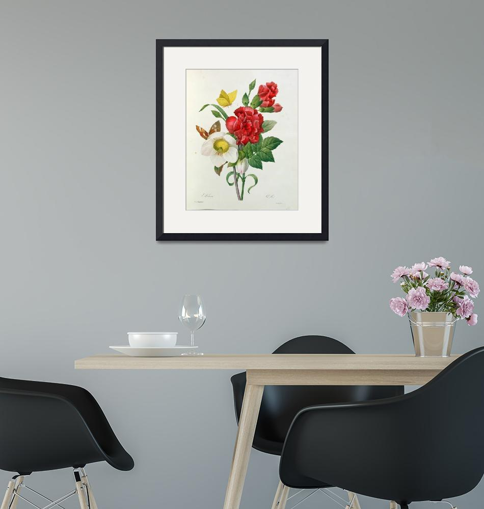 """""""Christmas Rose, Helleborus niger and Red Carnation""""  by fineartmasters"""