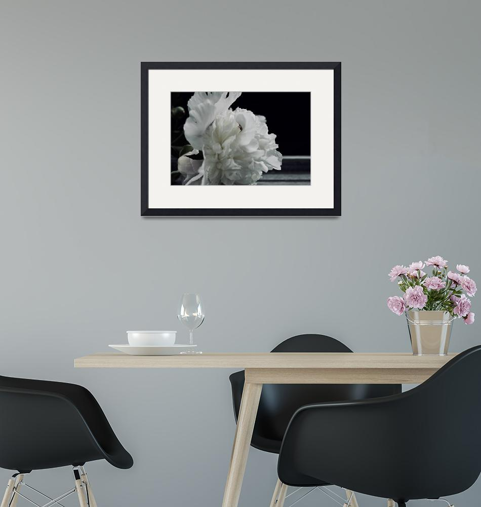 """Flower Peony Shelf No. 5460""  (2020) by spops"