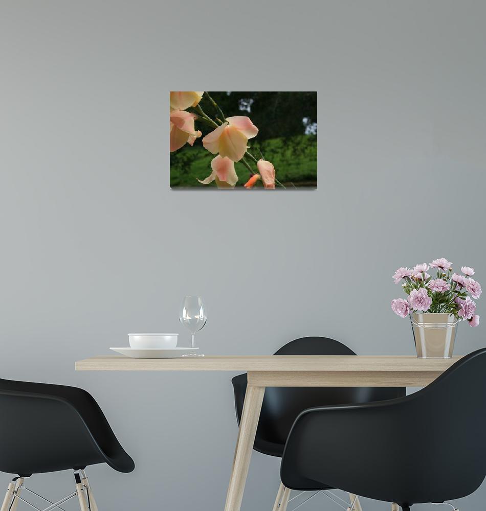 """""""Blushing Blooms""""  (2007) by"""