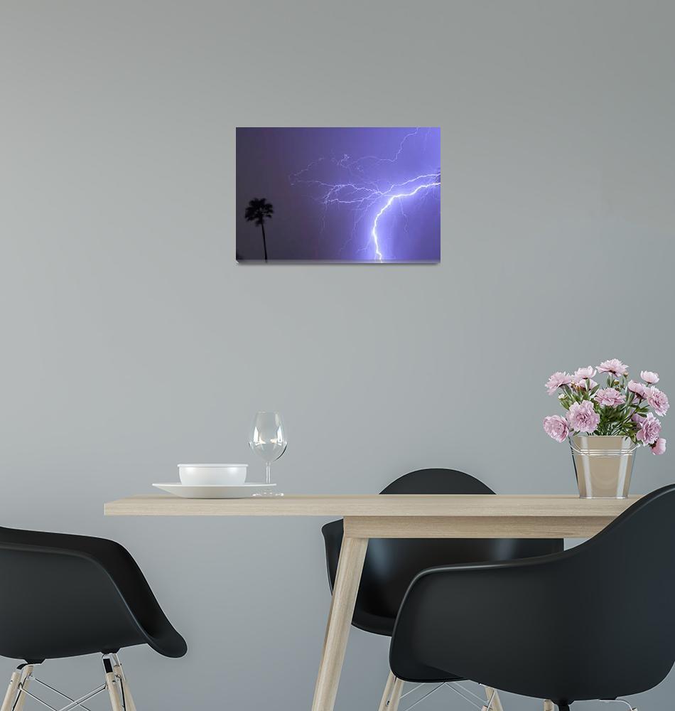 """Tropical Thunderstorm Night""  (2013) by lightningman"