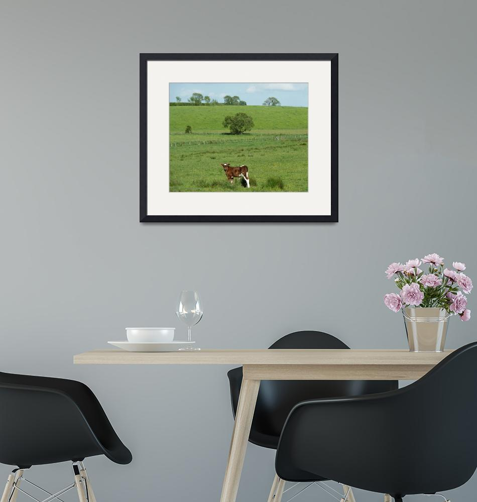 """""""Outstanding In My Field""""  (2012) by JMcCoubreyPhotography"""