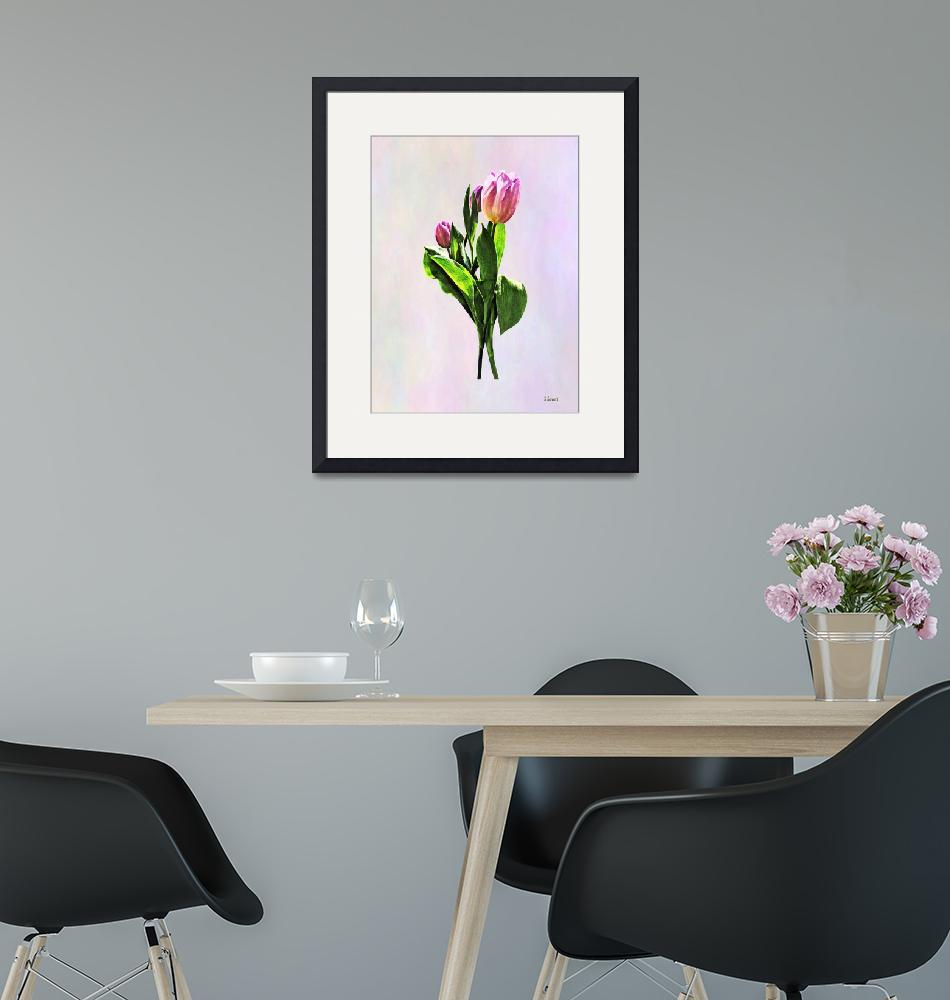 """Lovely Pale Pink Tulips""  by susansartgallery"