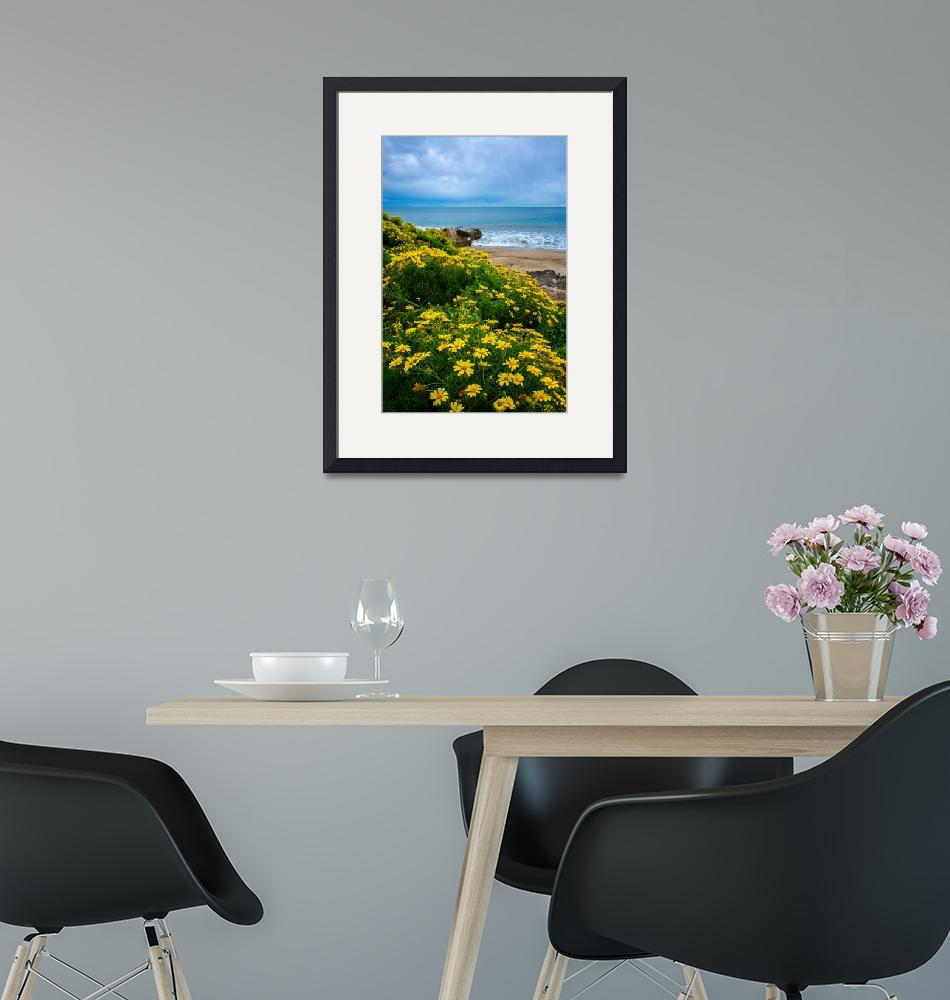 """""""Spring Wildflowers At Leo Carrillo State Beach""""  (2019) by LynnBauer"""