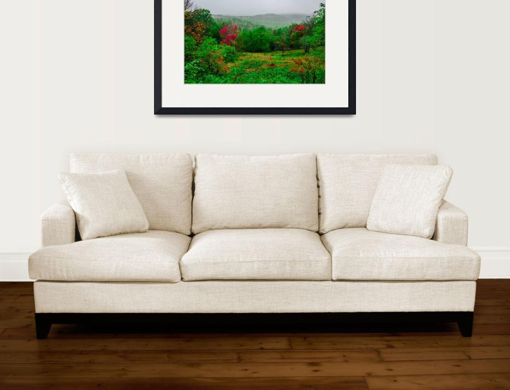 """""""mountain landscapes in virginia state around roano&quot  by digidreamgrafix"""