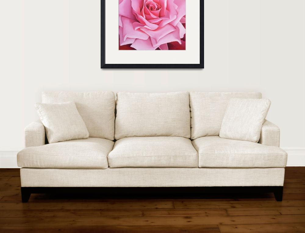 """""""The Rose by Myung-Bo Sim&quot  by fineartmasters"""