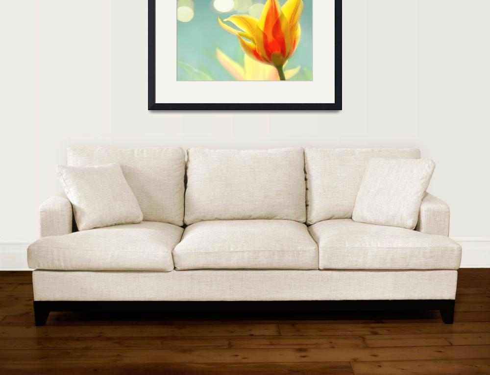 """""""April Flower""""  (2011) by CurrieRimaging"""